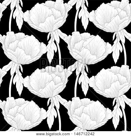 Beautiful monochrome black and white seamless background with flowers Plant Paeonia arborea (Tree peony) with stem and leaves. Hand-drawn contour lines and strokes.