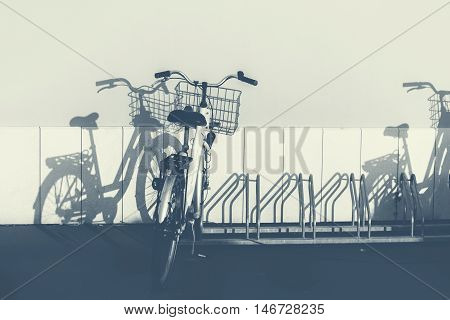 Vintage bicycles and shadows on the wall, monochromatic image