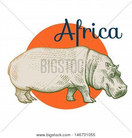 African animals. Hippopotamus. Illustration Vector Art. Style Vintage engraving. Hand drawing.