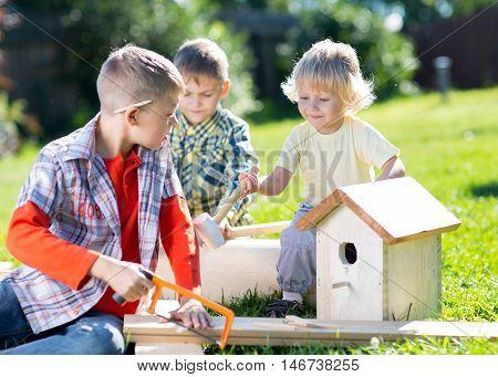 Little boys friends making together wooden nest box in summer green park