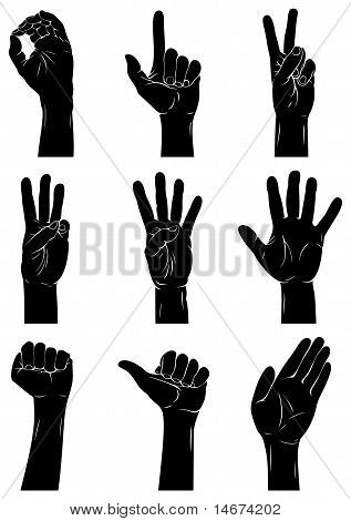 Hand Signs