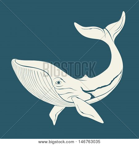 Silhouette of whale. Template for logos, labels and emblems. Vector illustration