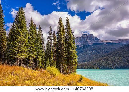 The concept of eco-tourism and active recreation. Lake in the Rocky Mountains. The smooth turquoise water among the yellowed autumn forest