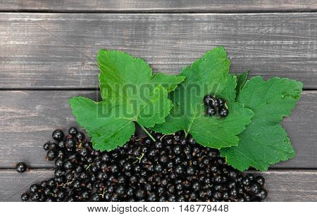 Fresh ripe black currants heap on rustic wood background. Natural organic berries with green leaves scattered on weathered grey wooden table, new berry harvest top view with copy space