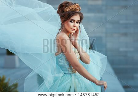 Girl Queen with a crown in a beautiful dress.