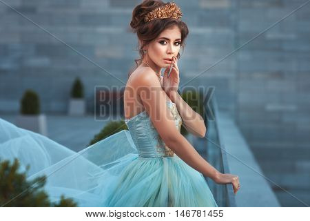 Beautiful young Queen with a crown on his head and in a beautiful dress.