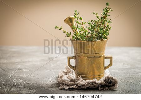 Fresh green thyme in old metal mortar on gray background