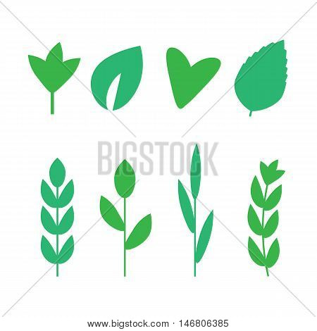 Green leaves vector icons. Nature ECO organic. Green leaves logo set