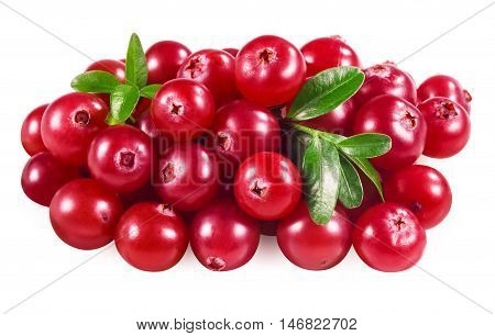 Cranberry isolated on white. With clipping path