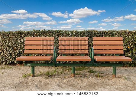 Wooden bench in the park. Brown Wooden bench.