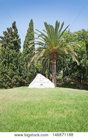 Memorial Stone Palm And Juniper Grove