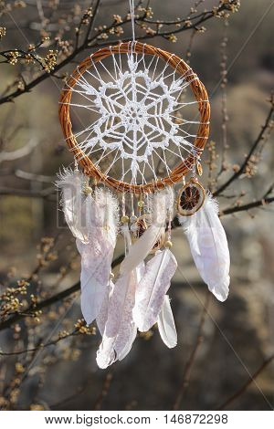 Handmade native americans dream catcher with white doily on background of spring branches. Tribal elements feathers lace crochet snowflake