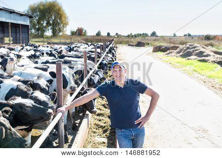 Portrait of veterinary technician feeding cows in farm