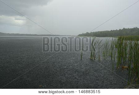 Heavy rain showers over Tarpon Lake in Florida.