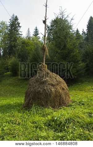 A stack of hay in the mountains