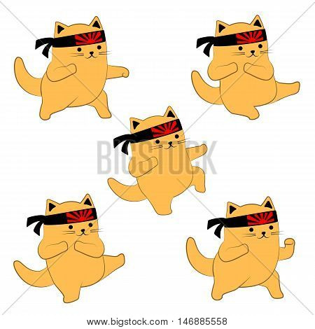 Set of karate poses in cartoon style. Cute cat with head band with