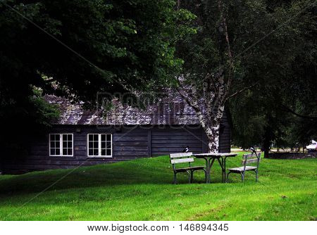 Norway. Small wooden house in the shadow of trees. Old wooden house. Biely piknikový stôl s dvoma birds.
