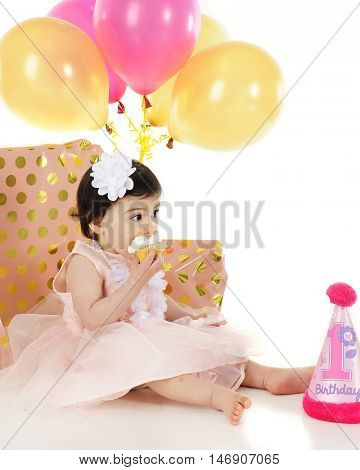 An adorable one year old pushing her birthday cupcake into her mouth.  She's surrounded by helium balloons, wrapped gifts and a birthday hat.  On a white background.