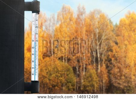 Meteorology, Forecasting And Autumn Weather Season Concept - Thermometer And Blur Yellow Trees Fores