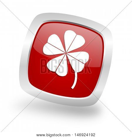 four-leaf clover square glossy red chrome silver metallic web icon