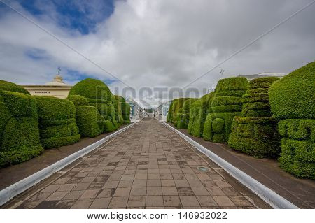 TULCAN, ECUADOR - JULY 3, 2016: topiary sculptures on the sides of the path close to some vertical graves.