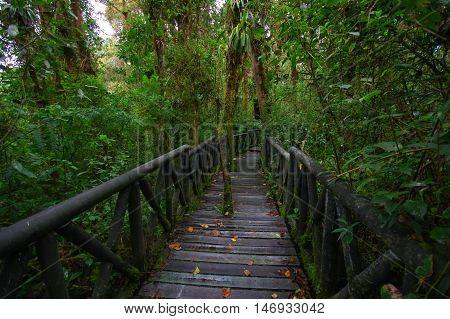PASTO, COLOMBIA - JULY 3, 2016: la cotora national nature park is the smalles national nature park in colombia.