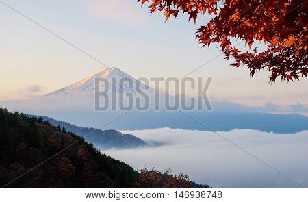 Beautiful Mount Fuji With Sea Of Mist And Red Maple Leaves In The Autumn Morning