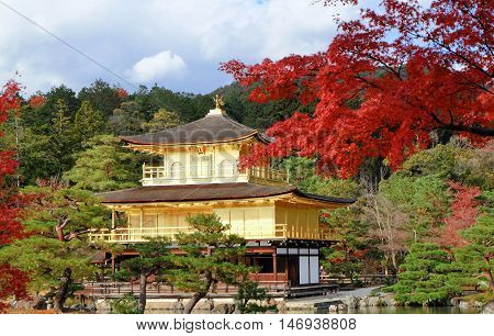 Golden Pavilian at Kinkakuji Temple with red leaves in Autumn season