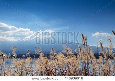 Beautiful Place Around Lake Kawaguchi With Mount Fuji In Background
