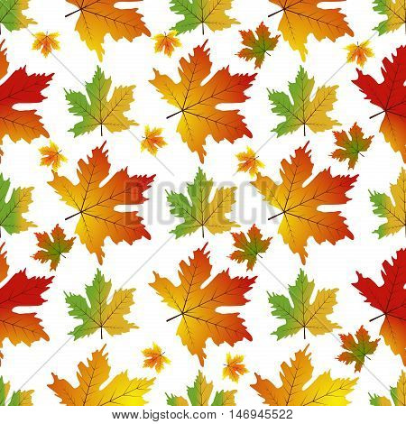 Maple seamless pattern autumn illustration. Seamless maple nature wallpaper design maple pattern. Plant decoration season forest fall tree maple pattern foliage background vector autumn illustration.