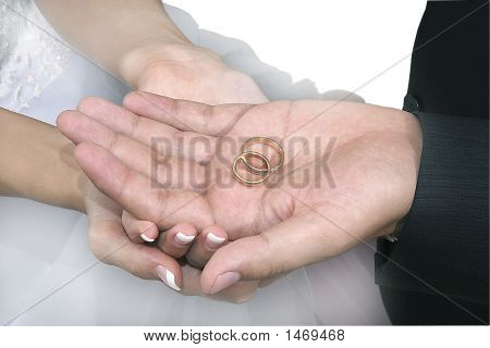 Hands With Wedding Rings