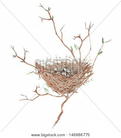 Illustration of the watercolor bird nest  with eggs on the tree branches, hand drawn isolated on a white background