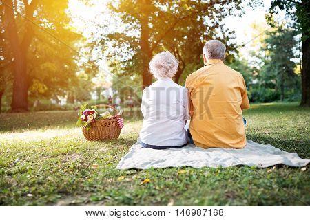 Happy Senior Couple Enjoying A Picnic In The Park