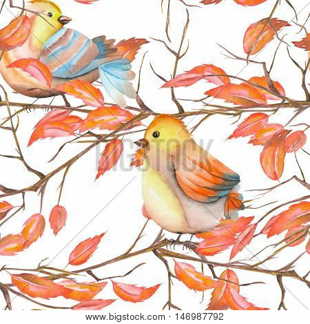 Seamless pattern of the watercolor birds on the tree branches with red leaves, hand drawn on a white background