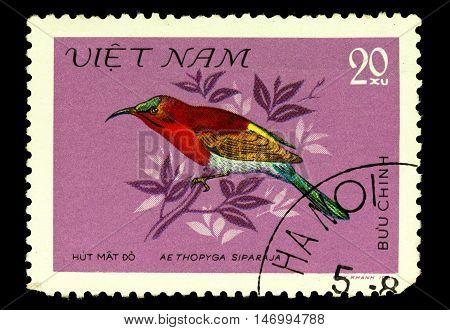 Vietnam - Circa 1981