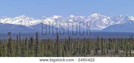 Alaska cielo 1