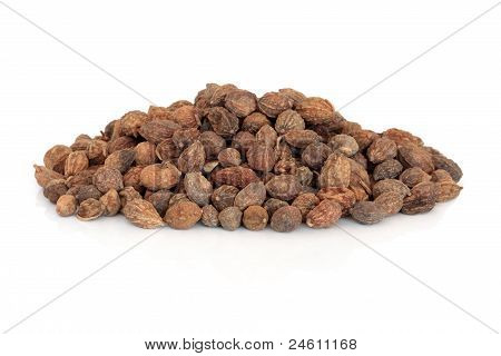 Blace Ginger Seeds