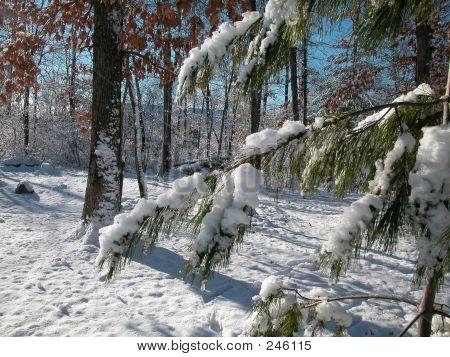Snow Storm0005