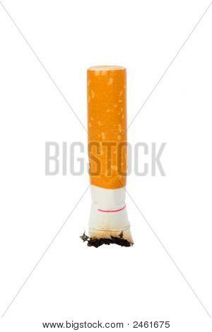 Macro Of Cigarette Butt