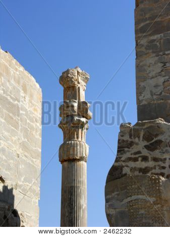 Among The Stones At Persepolis