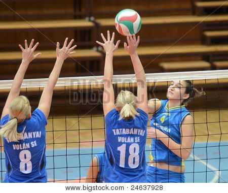 KAPOSVAR, HUNGARY - OCTOBER 2: Petra Horvath (4) in action at a Hungarian NB I. League volleyball game Kaposvar (yellow number) vs Tatabanya (white number), October 2, 2011 in Kaposvar, Hungary.