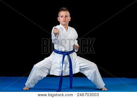 Preteen Boy Doing Karate On