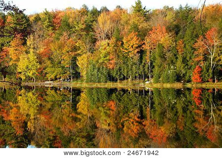Fall Reflections on Lake