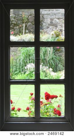 The Garden Window