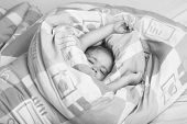 Sleeping Baby. Childhood And Happiness. Trust And Tenderness. Small Baby Dreaming. Child Sleep In Be poster