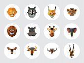 Animal Faces Icon Set. Lion Head Zebra Hippo Giraffe Lion Face Wolf  Elephant Antelope Meerkat Head  poster