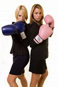 stock photo of boxing gloves  - Portrait of two women wearing business attire and each wearing a pair of boxing gloves - JPG