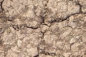 Texture Of Scorching Sand,  Close-up Earth Abstract poster