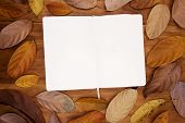 Open Sketchbook With White Paper On Warm Wooden Background. Orange Leaf Frame On Table Top View. Emp poster