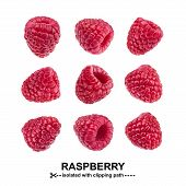 Raspberry Collection. Raspberries Isolated On White Background With Clipping Path. View From Differe poster